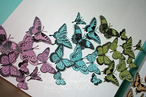Butterfly Canvases Closeup 1 by AmyR