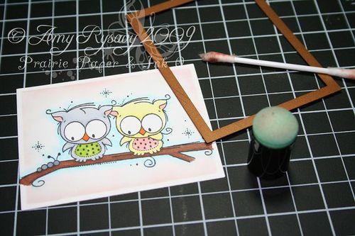 Sponging with nesties