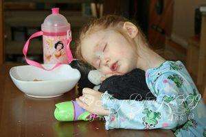 Josie sleeping