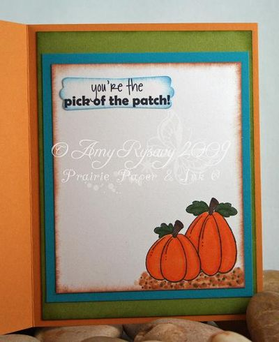 CCD Autumn Sugarplums Hello Pumpkin Card Inside by AmyR