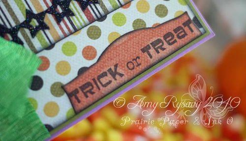 Fluffles TorT Card Closeup 2 by AmyR