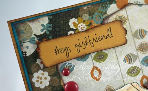 AmyR Sassy Sentiments HGF Card Closeup by AmyR