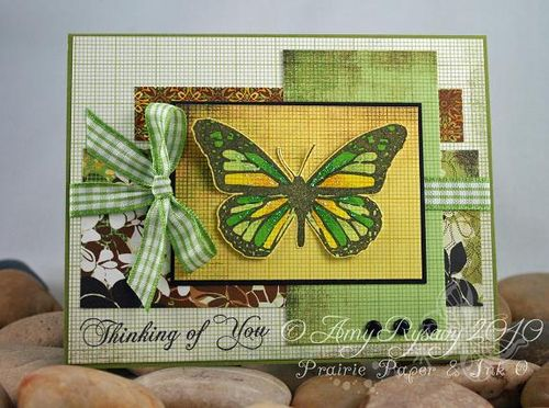 AmyR Butterflies ToY Card by AmyR
