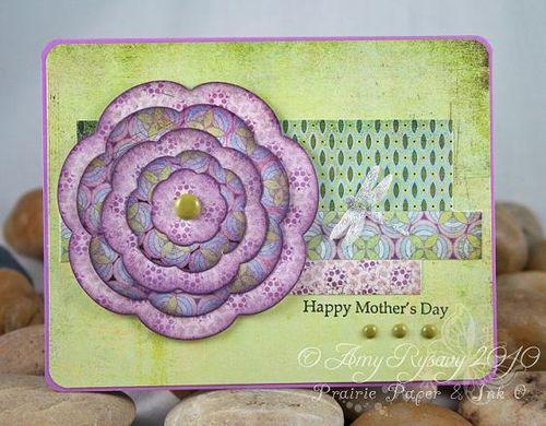 All Women Flower MD Card by AmyR