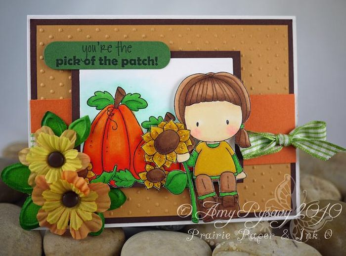 CCD Pick of thePatch Card by AmyR