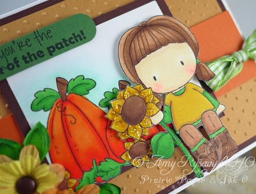 CCD Pick of thePatch Card Closeup by AmyR