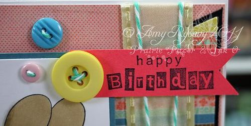TCP FatC Happy Bday Card Sentiment Closeup by AmyR