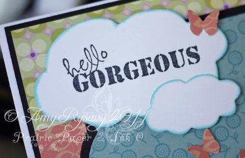 CCD SP Swthrt Birgitta Hello Gorgeous Card Sentiment Closeup by AmyR