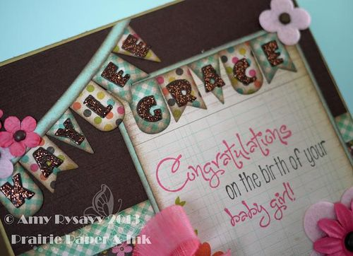 Kaylee Baby Card Closeup by AmyR