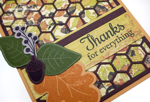 LJD-Fall-Foliage-TY-Card-Closeup-by-AmyR