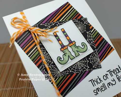 TAWS-Funky-Feet-Card-Closeup-by-AmyR