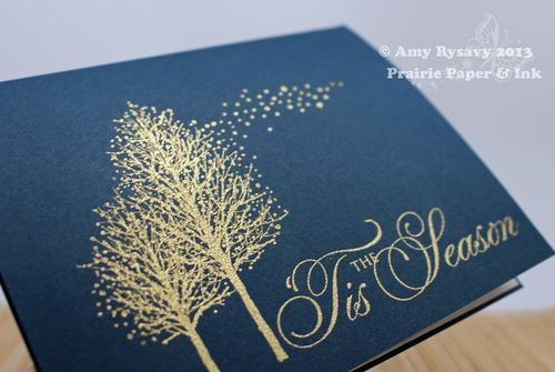 PB-Embossed-Card-Closeup-by-AmyR
