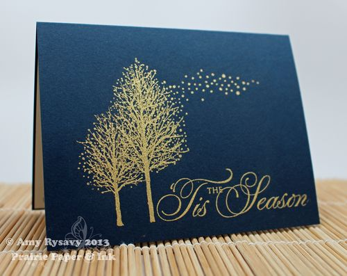 PB-Embossed-Card-by-AmyR