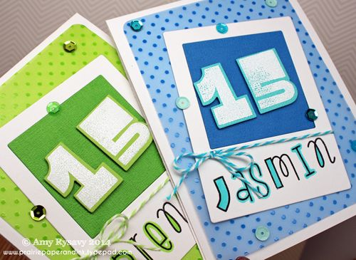 Twins-15-Bday-Cards-Closeup-by-AmyR