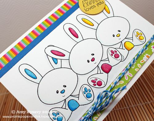 CCD-SN-Somebunny-Card-Closeup-by-AmyR