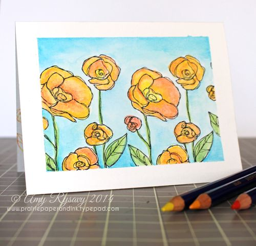 SB-Inktense-Flower-Garden-Card-by-AmyR
