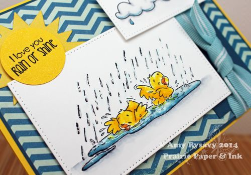 CCD-RR-Splish-Splash-Card-Closeup-by-AmyR