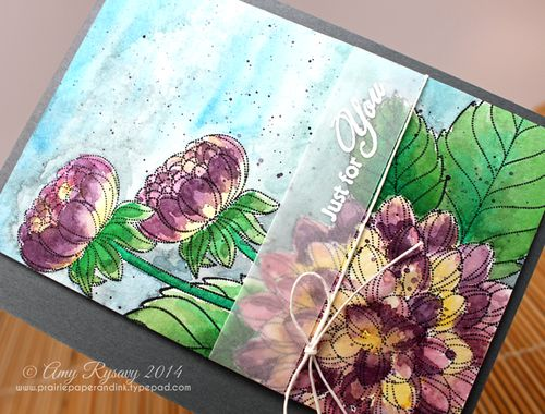 PB-Dahlia-Watercolor-jfy-Card-Closeup-by-AmyR