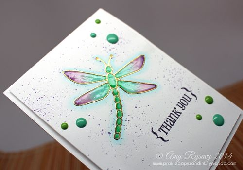 EC-Dragonfly-TY-Card-Closeup-by-AmyR