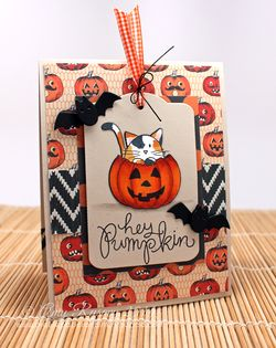 SSS-Hey-Pumpkin-Card-by-AmyR