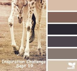 Inspiration-10-Sept-19