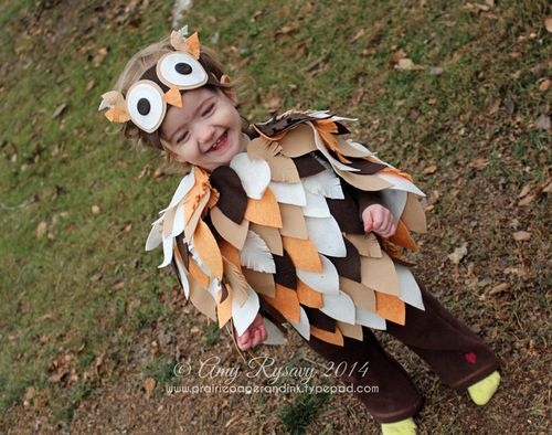AmyR-Owl-Hween-Costume-2014 : baby halloween costumes owl  - Germanpascual.Com