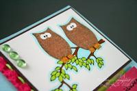 Gkd_owl_alsways_love_you_closeup_by