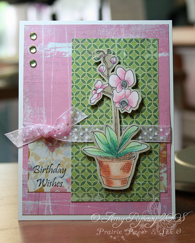Gkd_ah_botanical_dreams_card_1_by_a