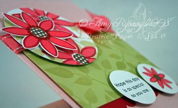 Pt_blog_post_card_aug_25_closeup_by