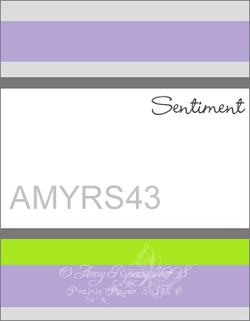 Amyrs43_2