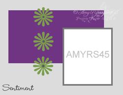 Amyrs45